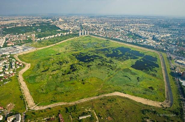 Jezioro Vacaresti, źródło: salvatidelta.ro