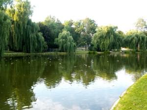 Zieleń miejska - Park Miejski im. Stanisława Staszica w Kielcach/źródło: wikipedia.org