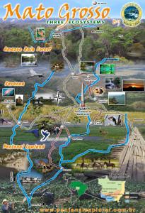 Ekosystemy w Mato Grosso źródło: http://araraslodge.com.br/index.php?option=com_content&view=article&id=124%pantanal-pousada-araras-04-noites-al-31&catid=124:tours-e-estadias&Itemid=124&lang=en