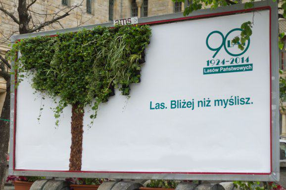 Zielony Billboard