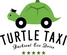 turtle taci logo