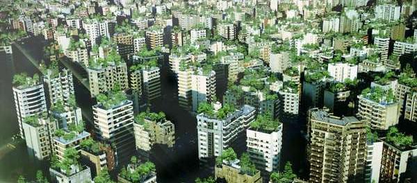 Zielone dachy w Bejrucie, źródło: http://ulicaekologiczna.pl
