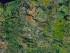 Poland-satellite
