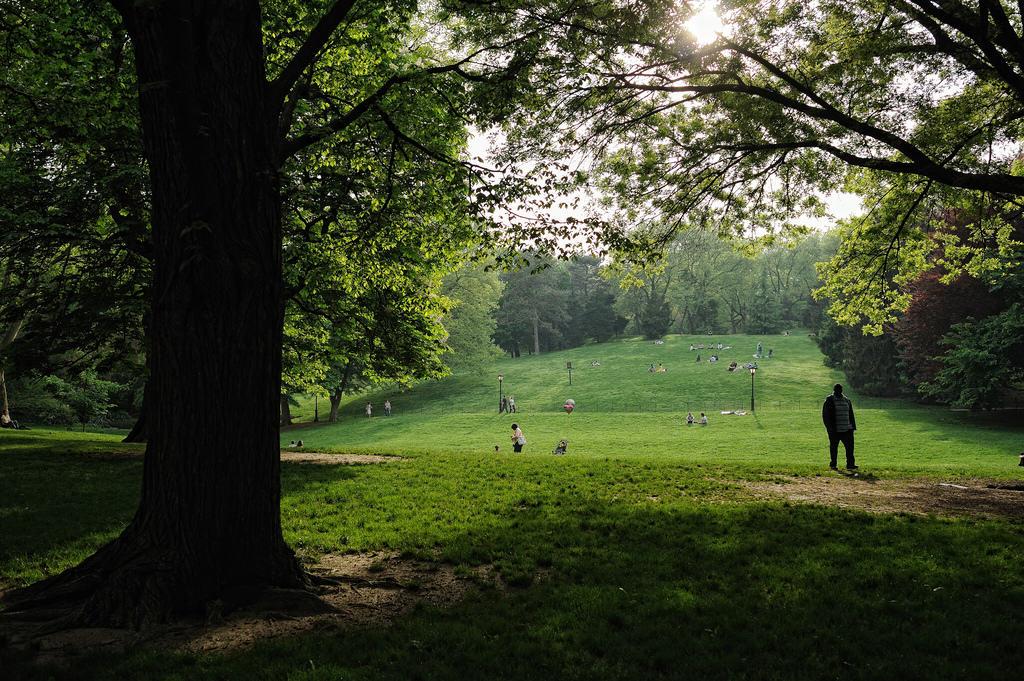 Park_Ralph Hockens_CC_BY_2.0