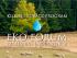 EkoForum