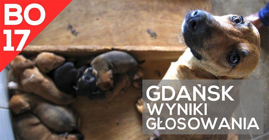 gdansk_wyniki