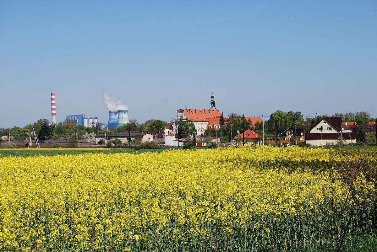 Widok_klasztoru_Norbertanek_i_Elektrowni_w_Czarnowąsach_Fabluk_CC_BY_SA_3_0