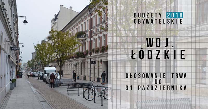 Łódzkie_2018_głosowanie