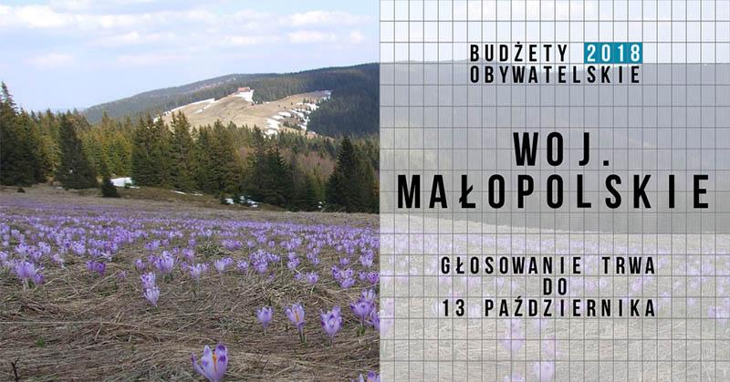 Małopolskie_głosowanie_2018