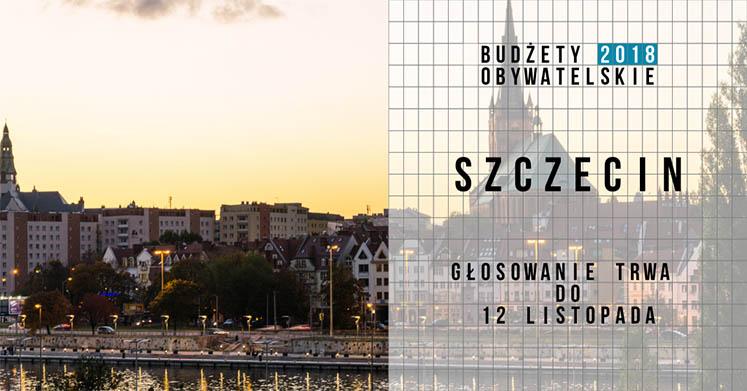 Szczecin_2018_głosowanie2