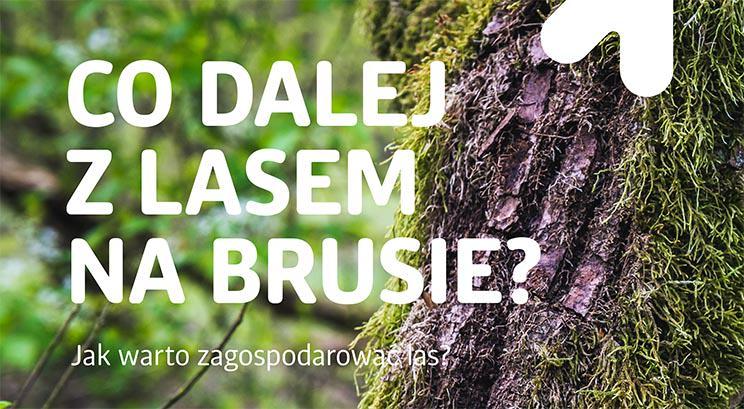 Co_dalej_z_Brusem