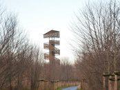 Wieża na Szachtach w Poznaniu