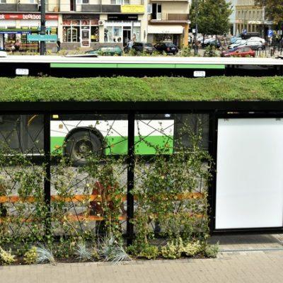 Zielone przystanki w Białymstoku