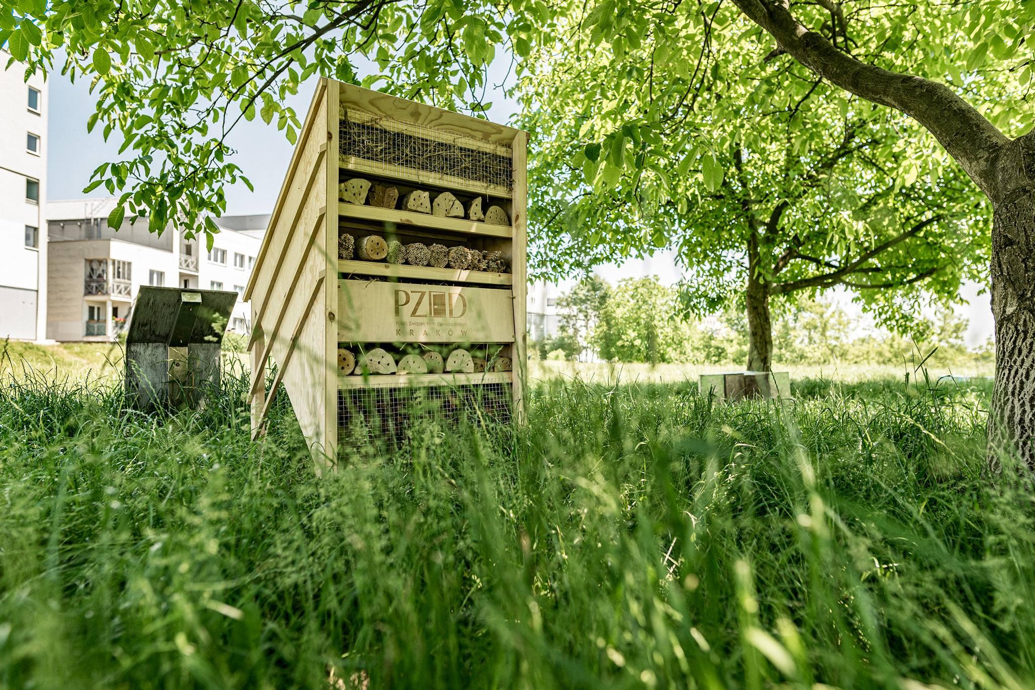 Domek dla owadów w Krakowie