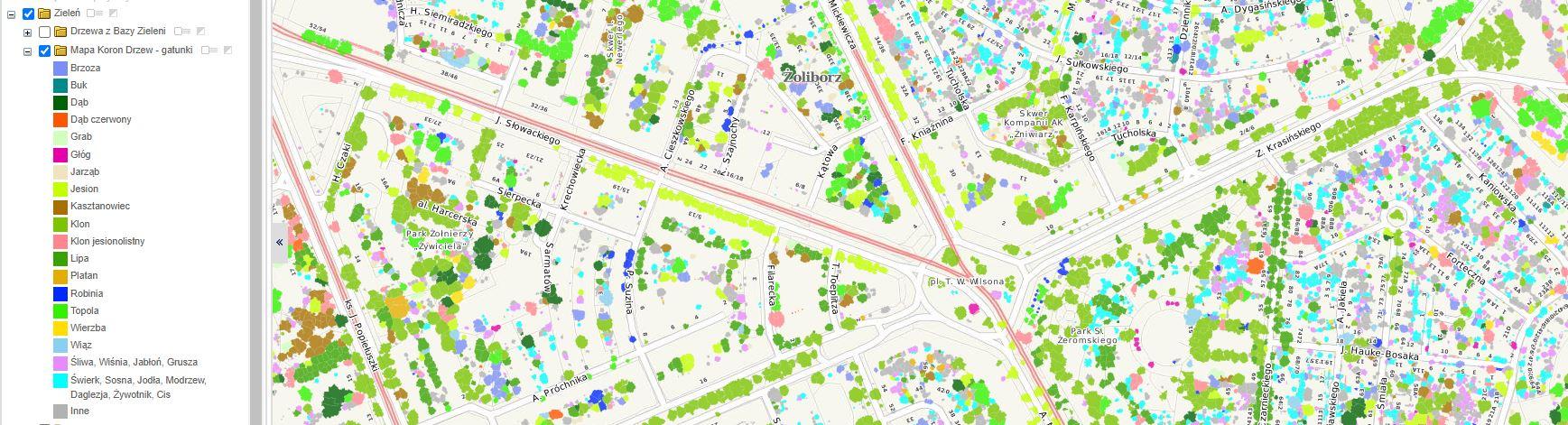 Mapa Korony Drzew