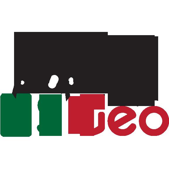 NS-Geo