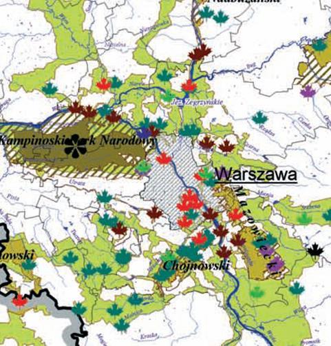 Zielony pierścień Warszawy, źródło: Plan Zagospodarowania Województwa Mazowickiego