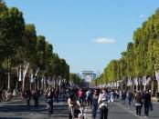 Paryż - Pola Elizejskie