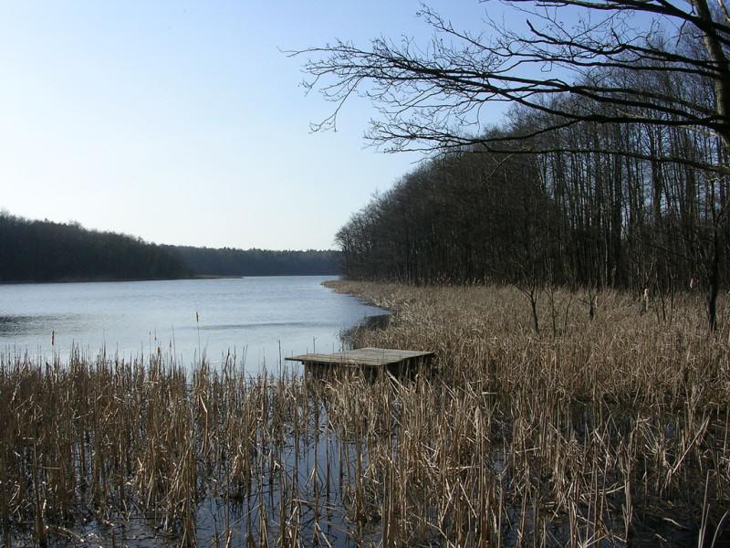 Jezioro Strzeszyńskie | fot. Tomasz Przechlewski | źródło: flickr.com | lic. CC-BY 2.